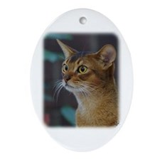 Abyssinian Cat AA025D-018 Ornament (Oval)