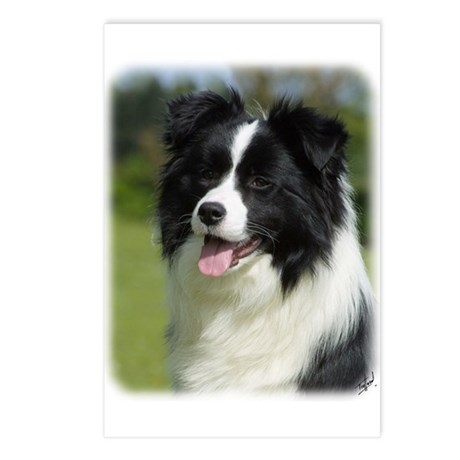 Border Collie 9T085D-102 Postcards (Package of 8)