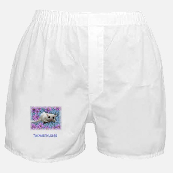 ToandFro Gliders Boxer Shorts
