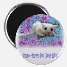 ToandFro Gliders Magnet