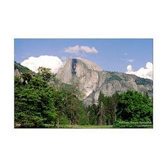 Yosemite's Half Dome Posters