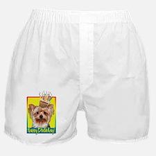 Birthday Cupcake - Yorkie Boxer Shorts