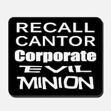 Recall Eric Cantor Mousepad