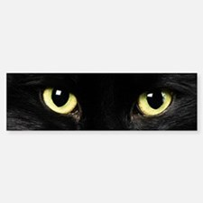 Black Cat Eyes Bumper Bumper Sticker