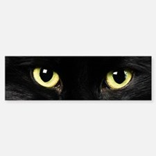 Black Cat Eyes Bumper Bumper Sticker