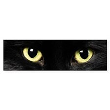 Black Cat Eyes Bumper Sticker
