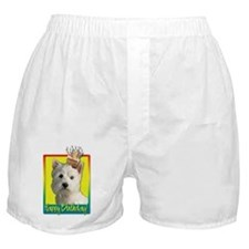 Birthday Cupcake Boxer Shorts
