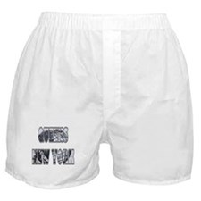 Queens, New York Boxer Shorts