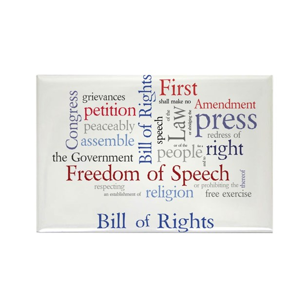 an examination of the first amendment the freedom of speech Tablished that help define the boundaries of free speech for  the activity with a  large group discussion that that compiles all the responses for analysis.
