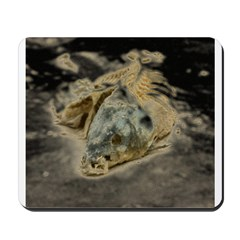 abstract dead fish Mousepad