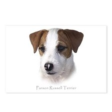 Parson Jack Russell Postcards (Package of 8)