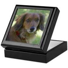 Keepsake Box long hair dachshund dog