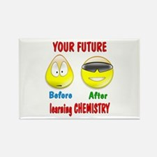 Chemistry Future Rectangle Magnet (10 pack)