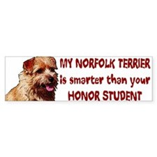smart Norfolk Bumper Bumper Sticker