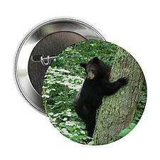 "Funny Black bear 2.25"" Button"