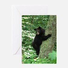 BearTree Greeting Cards