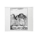 Camel Illustration Throw Blanket