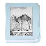 Camel Illustration baby blanket