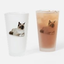 Siamese Cat Pint Glass