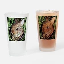 Cute Rabbit Drinking Glass