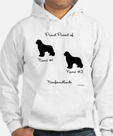 2 Newfoundlands Jumper Hoody