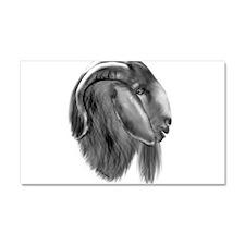 Boer Goat Buck Car Magnet 12 x 20
