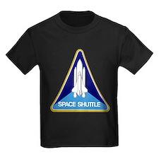 Original Space Shuttle Insignia T