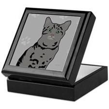 Gray Tabby Kitty Keepsake Box