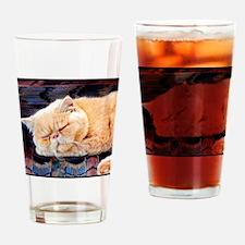 Persian Cat Pint Glass