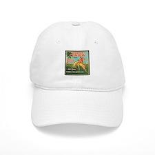 Florida Cowboy Baseball Cap