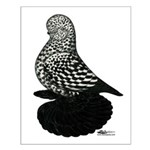 Splash Tumbler Pigeon Small Poster