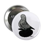 "Splash Tumbler Pigeon 2.25"" Button (10 pack)"