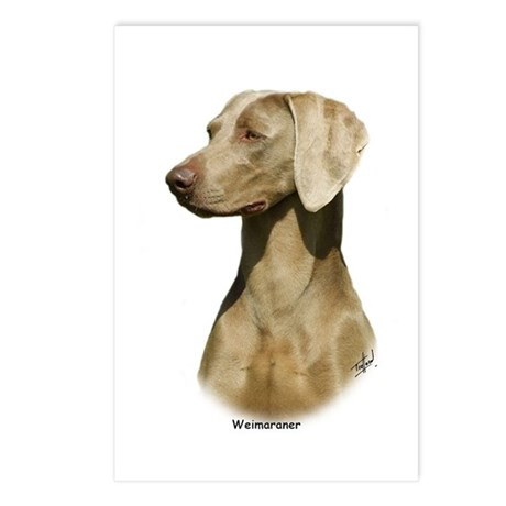 Weimaraner 9W019D-128 Postcards (Package of 8)