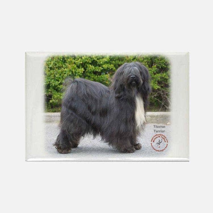 Tibetan Terrier 8T015D-13 Rectangle Magnet