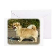 Tibetan Spaniel 9B040D-05 Greeting Card
