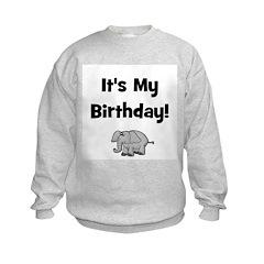 It's My Birthday! w/ Elephant Sweatshirt