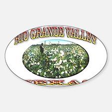 Rio Grande Valley Decal