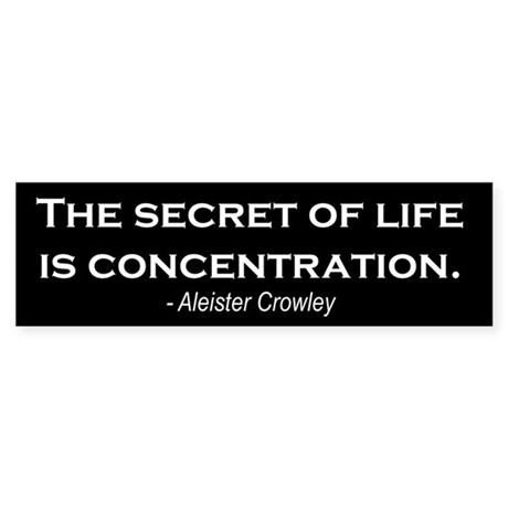 """Concentration"" Bumper Sticker"