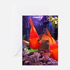 Parrot Fish Greeting Card