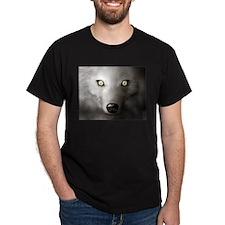 White wolf,  Black T-Shirt
