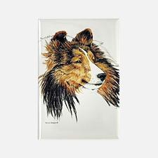 Shetland Sheepdog Sheltie Rectangle Magnet (10 pac