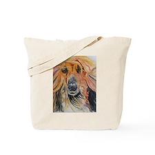 Tommy Afghan Tote Bag