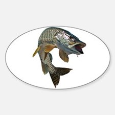 musky 4 Sticker (Oval)
