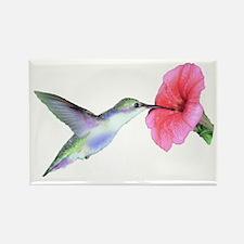 Humming Bird Rectangle Magnet (10 pack)