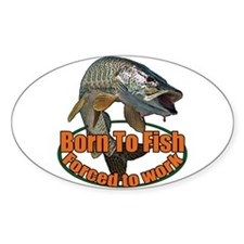 Born to fish forced to work Decal