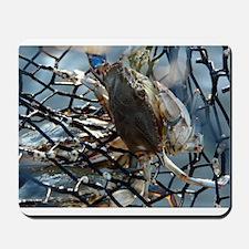 Gumbo Crab Mousepad