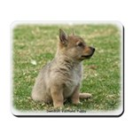 Swedish Vallhund Pup 9Y165D-131 Mousepad