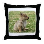 Swedish Vallhund Pup 9Y165D-131 Throw Pillow