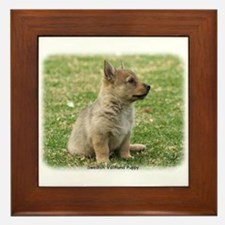 Swedish Vallhund Pup 9Y165D-131 Framed Tile