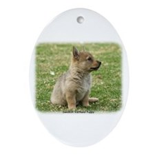 Swedish Vallhund Pup 9Y165D-131 Ornament (Oval)